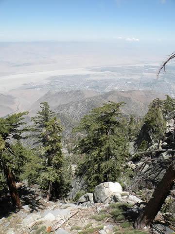 062209 パームスプリングス Mount San Jacinto State Park.jpg
